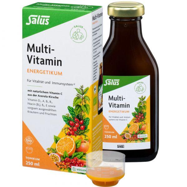 Salus Multi Vitamin Energetikum 250ml