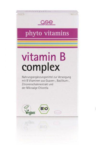 GSE Vitamin B Complex